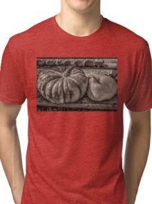Pumpkin Pair Tri-blend T-Shirt