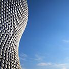 Selfridges Curves by John Dalkin