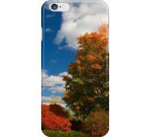 Blazing Landscape iPhone Case/Skin