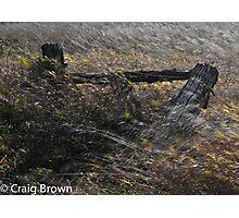 Windy Gateway Photographic Print