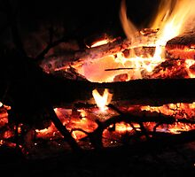 The heart of the fire. by Patricia Bixler