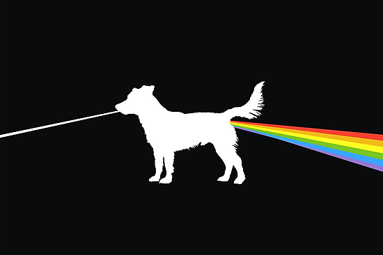 Dog side of the moon by Matt Mawson