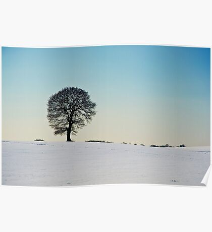A Winter Morning Poster