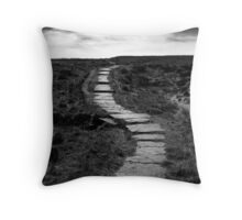 Lifes Paths Are Never Straight But Over The Horizon May Be Your Dream Throw Pillow