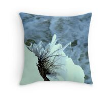 The Thaw Begins Throw Pillow