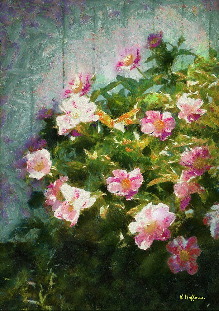 The Queen of The Peony by Kenneth Hoffman