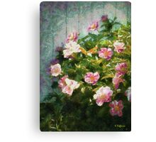 The Queen of The Peony Canvas Print