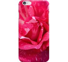Variegated Rose iPhone Case/Skin