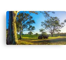 Bullock Creek Vineyard - Bendigo, Victoria Metal Print