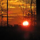Sunset at Charter Colony by ANNABEL   S. ALENTON