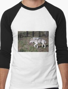 A lone timber wolf in the woods Men's Baseball ¾ T-Shirt