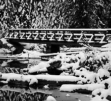 Snow Covered Bridge in Black and White by North22Gallery