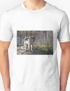 Timber wolf in the woods T-Shirt