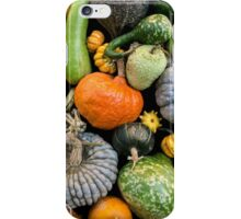 Pumpkins and gourds iPhone Case/Skin