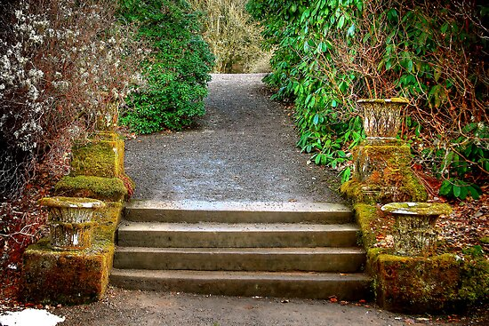 Up the Garden Path by Christine Smith