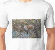 A lone Red Fox in the woods Unisex T-Shirt