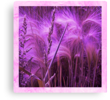 Pretty Grasses Canvas Print