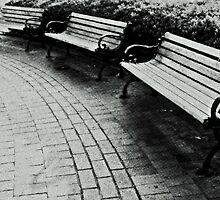 Three Benches by Scott Mitchell