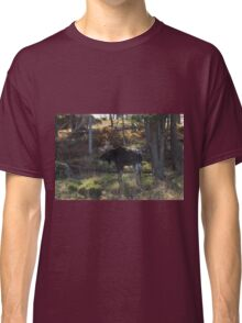 Large Moose in the woods Classic T-Shirt