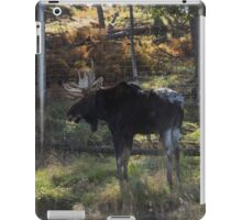 Large Moose in the woods iPad Case/Skin