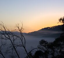 Fog Over The Valley by Racheal Wills