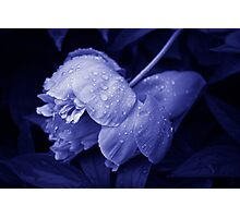 After a heavy rainfall... Photographic Print