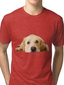 Chillin Pup  Tri-blend T-Shirt