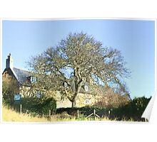 Abbey House Tearooms At Abbotsbury Dorset Poster