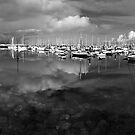 Bangor Marina No.2 by Chris Cardwell