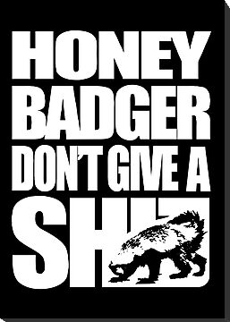 Honey Badger Don't Give A Shit (White Design) by jezkemp
