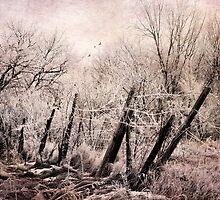 Pink Frost by KBritt