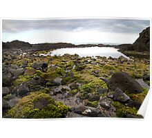 Boat Harbour rock pools  Poster