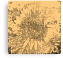 Vintage Sunflower artwork #2 Canvas Print