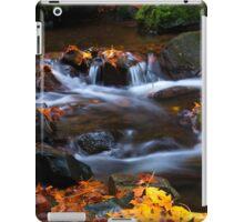 Cascades of Gold iPad Case/Skin