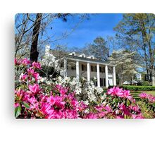Springtime In Alabama Canvas Print