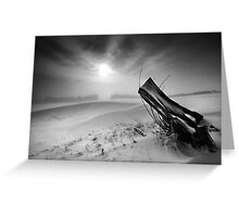 Willow's Gap BW Greeting Card