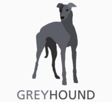 Grey retired racing greyhound by nlp18