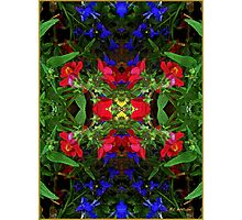 Fidelity - Card VII from The Tarot of Flowers Photographic Print