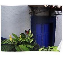 Tropical Calours And Plants - Colores Y Plantas Tropicales Poster