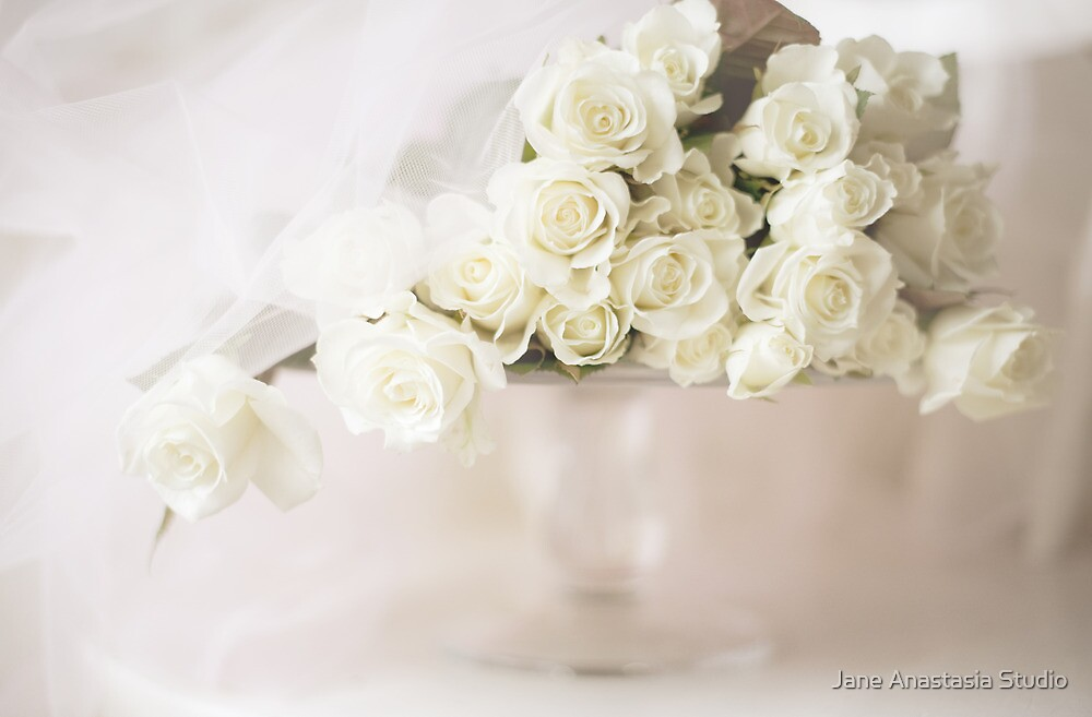 ...soft white traditional roses........ by Jane Anastasia Studio
