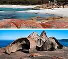 Kangaroo Island and Bay of Fires by Ian Fegent