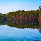 Lake at Callaway Garden by georgiaart1974