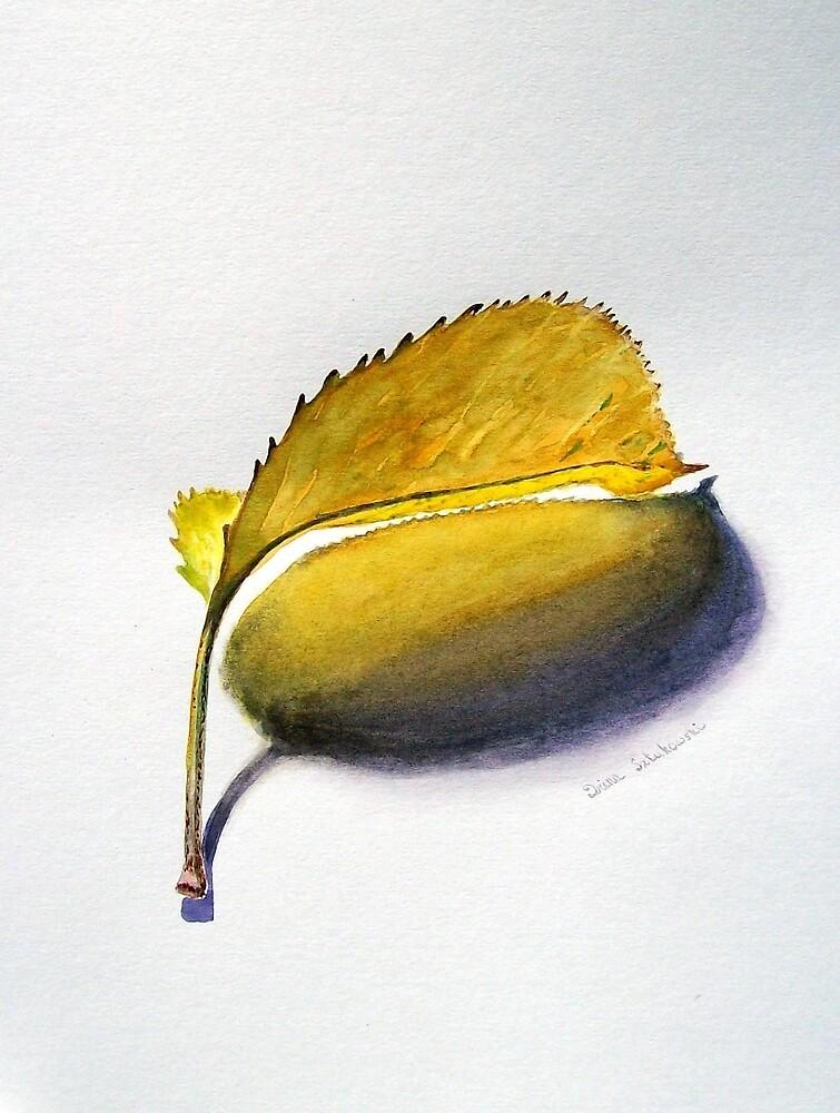 Yellow Shadow by Irina Sztukowski