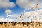 Wind Power by Walter Quirtmair