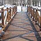 Wooden Bridge by branko stanic