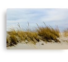 Dune and sky Canvas Print