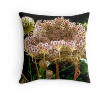 Queen Anne's Lace's giant seed head. Throw Pillow