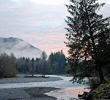 Hoh River at Dusk by North22Gallery