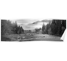 Black and White Hoh River at Dusk Poster