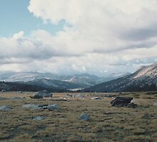 High Mountain Plain, Yosemite National Park by Diana Sproul